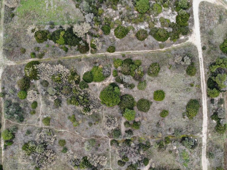 Vista aèria de les Madrigueres