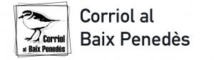 20200128 BLANC Corriol baix Penedés